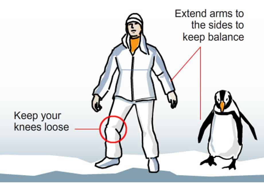 Keep Calm & Waddle On: Act like a penguin on the ice ...